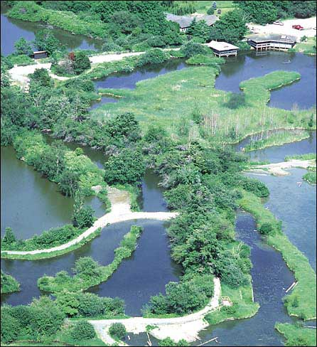 Arial View of the Reifel Migratory Bird Sanctuary